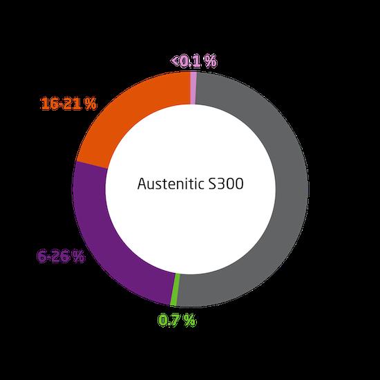 Inox Austenitic S300